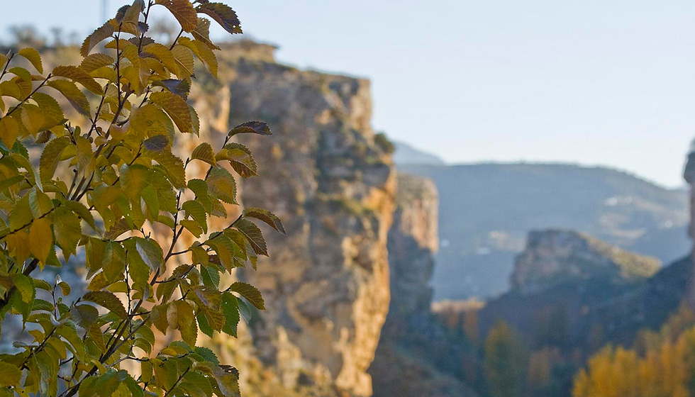 Los Tajos Gorge in autumn